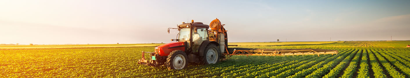 Farming and rural businesses - Accountancy services for Farming